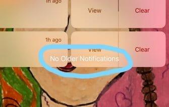 Apple iOS home screen visual bug